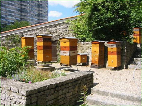 miel et abeilles